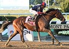 "Tonalist comes home strong to win the Jockey Club Gold Cup.<br><a target=""blank"" href=""http://photos.bloodhorse.com/AtTheRaces-1/At-the-Races-2014/i-Fc3BFj2"">Order This Photo</a>"