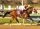 Big Macher won the 2014 California Cup Sprint.