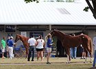 Fasig-Tipton Kentucky July Sale