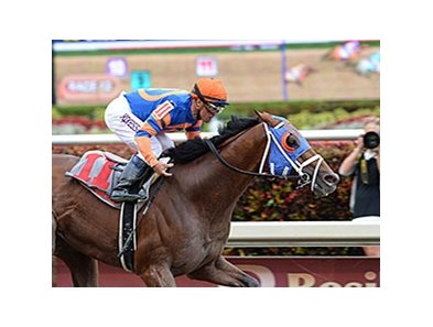 "Micromanage and Javier Castellano take the Skip Away at Gulfstream.<br><a target=""blank"" href=""http://photos.bloodhorse.com/AtTheRaces-1/At-the-Races-2014/35724761_2vdnSX#!i=3149248165&k=bbthJcF"">Order This Photo</a>"