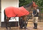 Royal Ascot - Little Bridge & Danny Shum