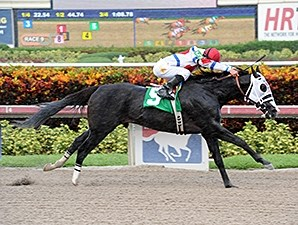 Bahamian Squall wins an allowance/optional claiming allowance race at Gulfstream Park on October 2.