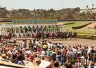 Del Mar Sets Dates for Two Meets in 2014