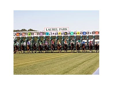 There will be no more turf racing at Laurel this year.