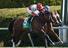 "Marchman won the Shakertown Stakes at Keeneland in the spring<br><a target=""blank"" href=""http://photos.bloodhorse.com/AtTheRaces-1/At-the-Races-2014/35724761_2vdnSX#!i=3175855254&k=F6pVJqH"">Order This Photo</a>"