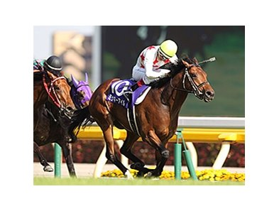 Mikki Isle wins the NHK Mile.