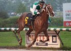 Touching Promise Seeks to Defend in Ballerina