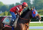 "Social Inclusion will face 12 in the Woody Stephens on June 7. <br><a target=""blank"" href=""http://photos.bloodhorse.com/TripleCrown/2014-Triple-Crown/Belmont-Stakes-146/i-VHkkWsN"">Order This Photo</a>"