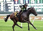 "Annecdote flies home to win the Noble Damsel Stakes.<br><a target=""blank"" href=""http://photos.bloodhorse.com/AtTheRaces-1/At-the-Races-2014/i-68Mxwhb"">Order This Photo</a>"