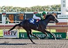 Quality Rocks won the Arlington-Washington Lassie over the Arlington Park Polytrack on Sept. 6.