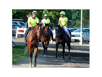 "Kid Cruz <br><a target=""blank"" href=""http://photos.bloodhorse.com/TripleCrown/2014-Triple-Crown/Belmont-Stakes-146/i-Z56Dskw"">Order This Photo</a>"