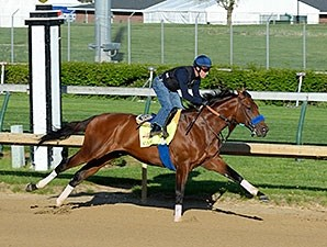 Candy Boy at Churchill Downs, April 26, 2014