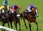 "Estimate (center) finished second in this year's Gold Cup (Eng-I) at Royal Ascot.<br><a target=""blank"" href=""http://photos.bloodhorse.com/AtTheRaces-1/At-the-Races-2014/i-ksXv4R8"">Order This Photo</a>"