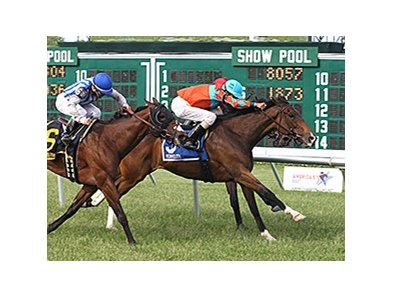 Tannery won the Misss Liberty Stakes at Monmouth Park on May 26.