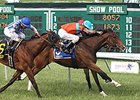 New York Stakes Looks Like Three-Horse Race