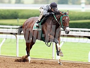 Don't Tell Sophia worked four furlongs in :48 4/5 at Keeneland on October 18.