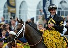 "9.7 million viewers watched Oxbow win the Preakness on NBC.<br><a target=""blank"" href=""http://photos.bloodhorse.com/TripleCrown/2013-Triple-Crown/Preakness-Stakes-138/29423277_98XmS6#!i=2519783639&k=89TkS2z"">Order This Photo</a>"