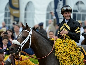 2013 Preakness Stakes winner Oxbow