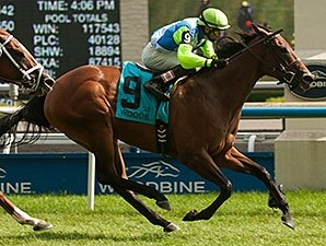 Ageless Rides Win Streak Into PID Masters