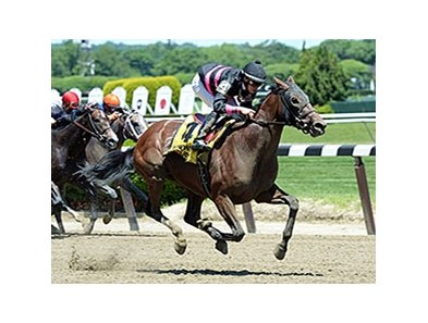 "Kid Cruz won the 2014 Easy Goer Stakes. <br><a target=""blank"" href=""http://photos.bloodhorse.com/AtTheRaces-1/At-the-Races-2014/i-RWDgzKP"">Order This Photo</a>"