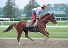 California Chrome galloping on May 23.