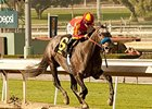 Midnight Lute colt won the Sham Stakes in his second career start in January.