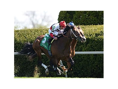 "Marchman cannot be caught in the Shakertown Stakes.<br><a target=""blank"" href=""http://photos.bloodhorse.com/AtTheRaces-1/At-the-Races-2014/35724761_2vdnSX#!i=3175363507&k=cVpbP7C"">Order This Photo</a>"
