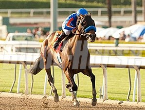Game On Dude winning the Santa Anita Handicap.
