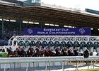 Santa Anita Asks for Breeders' Cup Volunteers