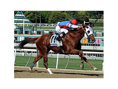 "Groupie Doll<br><a target=""blank"" href=""http://photos.bloodhorse.com/BreedersCup/2013-Breeders-Cup/Filly-and-Mare-Sprint/33149887_tpsLsn#!i=2879067433&k=bmCT6kS"">Order This Photo</a>"