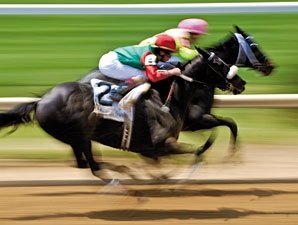 Study: EIPH Does Not Shorten Racing Careers