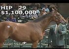 Keeneland September Sale 2014 - Hip 29