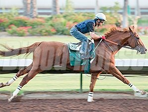 California Chrome went 4 furlongs in :47 2/5 on August 22.