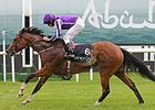 Marvellous wins the 2014 Etihad Airways Irish 1000 Guineas at the Curragh.