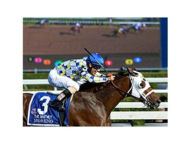 Moreno running in the Whitney.