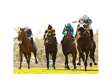 Weewinnin leads the way in the California Cup Turf Classic.