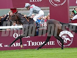 Treve returns to the races in the Qatar Prix Vermeille.
