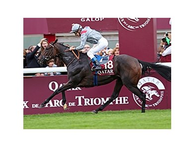 "Treve wins the 2013 Qatar Prix de l'Arc de Triomphe (Fr-I). <br><a target=""blank"" href=""http://photos.bloodhorse.com/AtTheRaces-1/at-the-races-2013/27257665_QgCqdh#!i=2814130822&k=hH49sZs"">Order This Photo</a>"
