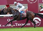 "Treve returns to the races in the Qatar Prix Vermeille.<br><a target=""blank"" href=""http://photos.bloodhorse.com/AtTheRaces-1/at-the-races-2013/27257665_QgCqdh#!i=2814130822&k=hH49sZs"">Order This Photo</a>"
