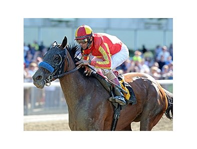 Fiftyshadesofhay wins the Ruffian Stakes.