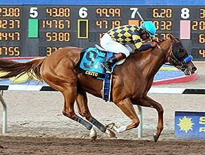 Baffert Duo Chitu, Bayern in Derby Works
