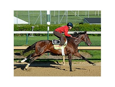 "Medal Count <br><a target=""blank"" href=""http://photos.bloodhorse.com/TripleCrown/2014-Triple-Crown/Kentucky-Derby-Workouts/i-JVb9RFK"">Order This Photo</a>"