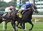 Imperia wins the Pilgrim Stakes.