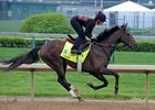 Kentucky Derby News Minute: 4/29/2013