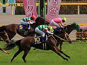 Nuovo Record Edges Harp Star in Japanese Oaks