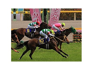 Nuovo Record wins the Japanese Oaks.