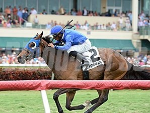 Anjaz comes home strong to win the Orchid Stakes at Gulfstream Park.