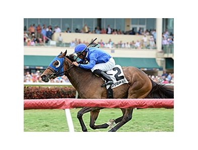 "Anjaz comes home strong to win the Orchid Stakes at Gulfstream Park.<br><a target=""blank"" href=""http://photos.bloodhorse.com/AtTheRaces-1/At-the-Races-2014/35724761_2vdnSX#!i=3149118503&k=CNvGFZr"">Order This Photo</a>"