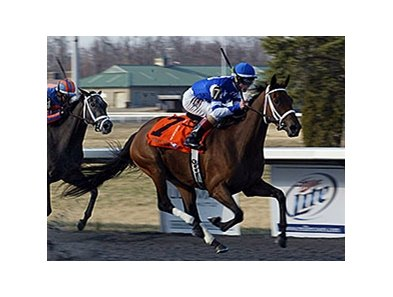 Aurelia's Belle flies home to win the Bourbonette Oaks at Turfway Park.