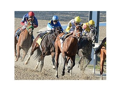 "Unbridled Forever won the 2014 Silverbulletday. <br><a target=""blank""http://photos.bloodhorse.com/AtTheRaces-1/At-the-Races-2014/35724761_2vdnSX#!i=3029182902&k=KXgM7b7"">Order This Photo</a>"